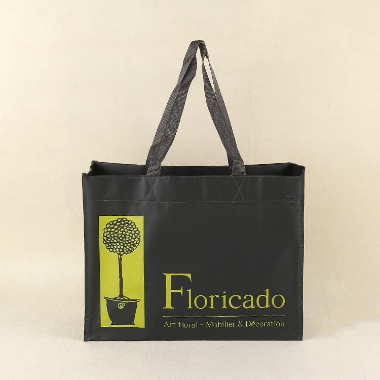 Printing Shopping bag Laminated Waterproof Non Woven Fabric With Film Coating